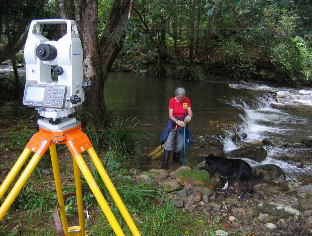 how to become a surveyor assistant